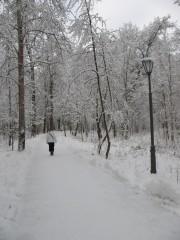 Дорога в монастырь..