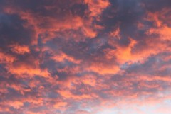 небеса (Оптина пустынь, 10.09.2012г.)