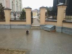 Мурз и тесные врата))