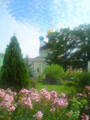 В солнечной дымке)))