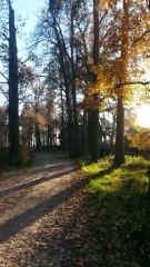 Осень в Оптиной-2