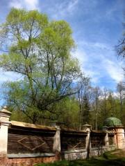 Интересно, этот забор видел батюшка Амвросий и другие старцы? :)))