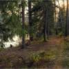 Тишина осеннего леса (снимок сделан 3 октября 2016 г.)