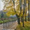 Разбросала осень желтую листву (снимок сделан 3 октября 2016 г.)